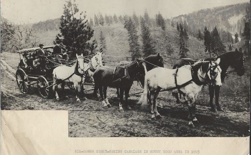 Six Horse Mt Hood Area Sightseeing Carriage Photo