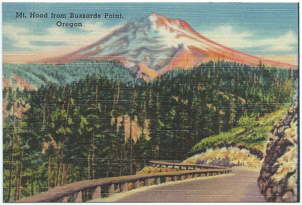 20 Assorted Views of Portland, Oregon